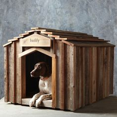Reclaimed Wood Dog House, Medium.  You think they'd include the German Shorthaired Pointer for me??