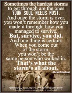 Sometimes the hardest storms to get through are the ones your soul needs most. And once the storm is over, you won't remember how you made it through, how you managed to survive. But, survive, you did. And one thing is certain: When you come out of the storm, you won't be the same person who walked in. That's what the storm's all about. -Haruki Murakam