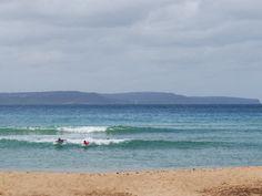 palm-beach-sydney   M <3