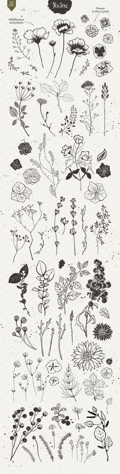 Rustic nature planner doodles and bullet journal decoration ideas. – Anna Rustic nature planner doodles and bullet journal decoration ideas. Rustic nature planner doodles and bullet journal decoration ideas. Cute Tattoos, Flower Tattoos, Small Tattoos, Tatoos, Art Floral, Tattoo Drawings, Art Drawings, Tattoo Sketches, Drawing Art