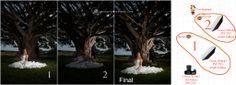 #offcameraflash #photographytutorial #OFC #wedding #weddingphotography #dreampix #cameralighting #lighting #flash