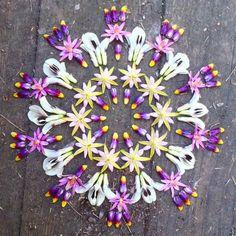 Mandala art - Nature mandala - Flower mandala - Mandala - Art - Flower art - Mandalas made with can find Mandalas and more on our we. Land Art, Mandala Art, Mandala Nature, Mandala Meditation, Mandala Drawing, Mandala Tattoo, Mandala Design, Deco Floral, Arte Floral