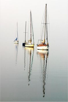 """Sailing. Looks like our """"Sailing Gang"""". Our """"Chanty"""" had a black hull."""