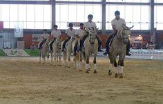 Alumnos extremeños y portugueses realizarán exhibiciones ecuestres en la VI edición de la Feria del Toro y el Caballo de Badajoz http://www.rural64.com/st/turismorural/Alumnos-extremenos-y-portugueses-realizaran-exhibiciones-ecuestres-en--5620
