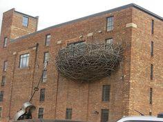 bird's nest balcony in Baltimore (photo: fatuousbrevity)