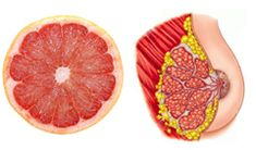 Foods That Look Like Body Parts They're Good For   Dr Akilah El - Celestial Healing Wellness Center