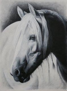 Pauline Sharps Art, Ireland
