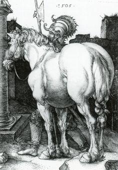 The Large Horse by Albrecht Durer