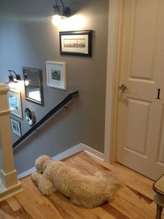 Stairwell art, wall color and trim, door handles