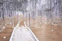 by Heikki Rantala