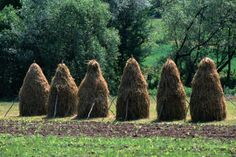 Haystacks can be seen throughout much of the Transylvania region of Romania. Gothic Castle, Town Names, Carpathian Mountains, Meeting New People, Lonely Planet, Romania, Landscapes, To Go, Places To Visit
