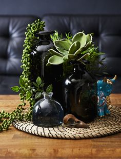 A collection of black vases filled with plants. for the coffee table in the living room Coffee Table Centerpieces, Decorating Coffee Tables, Table Decor Living Room, Room With Plants, Black Vase, Coffee Table Styling, Deco Floral, Decoration Table, Black Decor