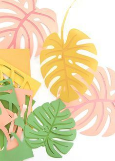 DIY Paper Monstera Leaves