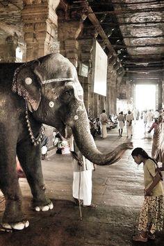 Namaste, India