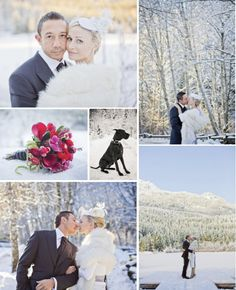 f323c816a74 18 Best A Winter Wedding in Whistler images in 2019