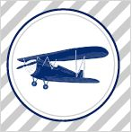 Airplane Party Invitations & Misc :: PBKids :: free printables
