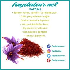 #safran #safranın faydaları #safranın faydaları nelerdir #faydaları #zararları #faydalarıne #faydalarine Tricks, Fitness Inspiration, Diy Inspiration, Health Tips, Health Care, Natural Health Remedies, Natural Medicine, Herbalife, Top