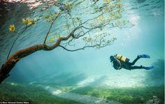 Parque submerso na Áustria. A natureza e sua criatividade crônica... =]
