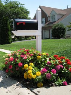 Mailbox garden with zinnias. Good idea if you have green foundation hedges and a shady yard. Mailbox Planter, Mailbox Garden, Mailbox Landscaping, Landscaping Ideas, Landscaping Software, Garden Landscaping, Flower Bed Designs, Flower Garden Design, Mailbox Flowers