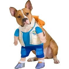 Go Diego Go Pet Costume ** Visit the image link more details. (This is an affiliate link and I receive a commission for the sales)