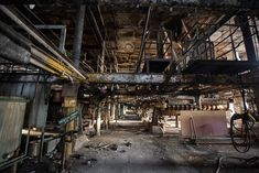 34 Illicit Photos From Deep Inside The Abandoned Domino Sugar Refinery: Gothamist
