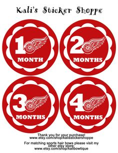 Detroit Red Wings Baby Monthly Onesie Bodysuit Stickers Month to Month Baby  Stickers NHL on Etsy 56a8da87dc
