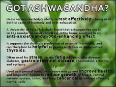 Ashwagandha - 2 to 3 grams per day - helps sluggish thyroid. Helps relieve stress, calms, helps you fall asleep and stay asleep.
