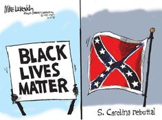 In light of the events of June, sociologist Philip Cohen reviews the research on how to best keep social movement momentum by balancing hope and despair. Cartoon by http://www.ajc.com/photo/news/luckovich-cartoon-s-carolina-rebuttal/pCg6qd/