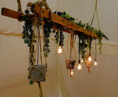 Rustic wedding decor by Posh Frock & Wellies - Adorn your marquee or wedding venue with this decorative ladder centre piece embellished with foliage, Edison lights & macrame plant hangers.