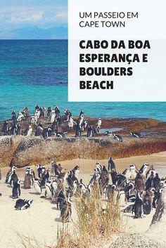 Cabo da Boa Esperança e Boulders Beach: só aqui você pode chegar na pontinha do continente africano e ainda passar por uma praia lotada de pinguins!