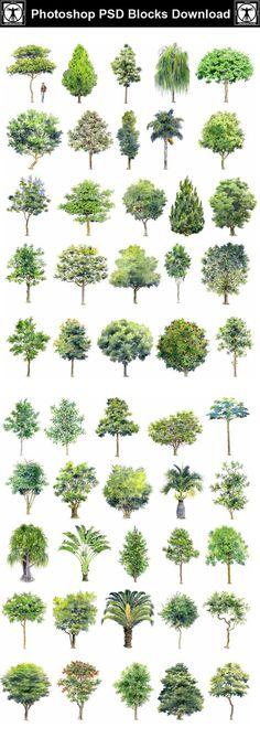 Hand-painted PSD Tree Blocks 2 – CAD Design | Free CAD Blocks,Drawings,Details