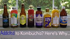 Back in early I wrote an article about how kombucha can be helpful to rebalancing the microbiota in the gut and does not flare up candida for most people who tend to struggle with Kombucha Brands, Kombucha Benefits, Health Benefits, Kambucha Recipe, Health News Articles, Health And Nutrition, Gut Health, Water Kefir