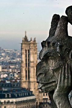 Notre-Dame. París