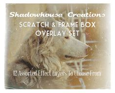 shadowhouse creations: Scratch & Frame Box Overlay Set