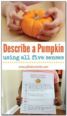 Describe a pumpkin using all five senses: This fall science activity challenges kids to describe the properties of a pumpkin with rich detail. Download the free worksheet to guide kids in describing a pumpkin using all five senses. || Gift of Curiosity