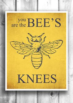 The Bee's Knees - Fine art letterpress poster – Happy Letter Shop