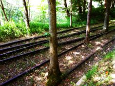 Old train tracks in the old mining town of Nuttallburg. The National Park Service excavated and stabilized the ruins, and this historic gem is now open to the public.
