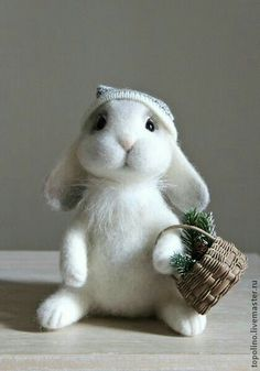 Bearded Bunnie with Basket