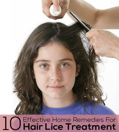 Top 10 Effective Home Remedies For Hair Lice Treatment