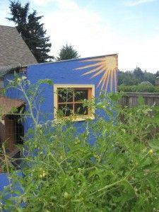 cheery blue coop