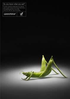 #GREENPEACE - Do You Know What You Eat? | #ads #adv #marketing #creative #publicité #print #poster #advertising #campaign < repinned by www.BlickeDeeler.de | Visit our inspirational website www.Printwerbung-Hamburg.de