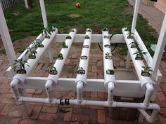Backyard DIY hobby hydroponics...
