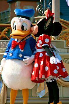 Donald Duck and Minnie Mouse - Walt Disney World Walt Disney, Disney Love, Disney Pixar, Disney Characters, Funny Disney, Disney Travel, Disney Stuff, Daisy Duck, Donald Duck Costume