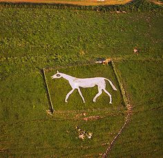 Pewswey (new) White Horse - The Wiltshire White Horses | Alexandra May