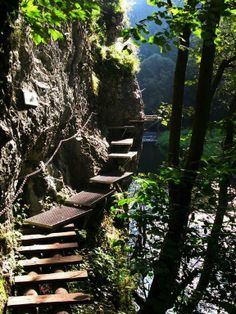Slovak Paradise National Park Places To Travel, Places To See, Modern Staircase, Central Europe, Bratislava, Amazing Pictures, Natural Wonders, Planet Earth, Pathways