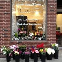 Boston florist offers excellent selection of flowers to its customers. You can find many types of flowers like Dutch flowers, plants, European dish gardens etc. It offers 16 different colors of the most beautiful roses as well as special flower arrangements for all occasions, including birthdays wedding and many more. Beautiful Roses, Most Beautiful, Boston Florist, European Dishes, Dish Garden, Special Flowers, Types Of Flowers, Different Colors, Flower Arrangements