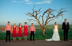 TINK has shot more than 100 weddings over the last few years and this gallery displays some of the images created over that time Bridesmaid Dresses, Wedding Dresses, Real Weddings, Gallery, Photography, Image, Fashion, Bridesmade Dresses, Bride Dresses