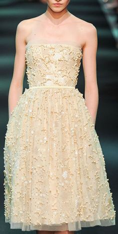 Georges Hobeika Couture F/W 2013-2014