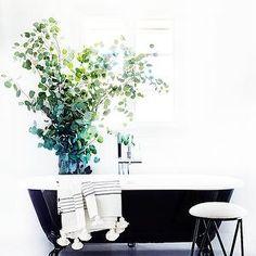 Black Claw Foot Tub, Transitional, bathroom, Consort Design