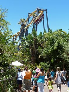 Cobra / Cape Cobras #Ratanga Junction #SouthAfrica #rollercoaster